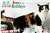 Image of Home for the Holidays promotional graphic