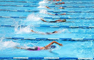 image of swimmers in pool lanes