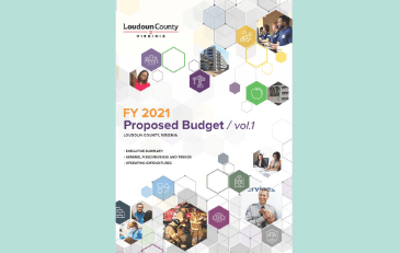 Image of cover of budget Volume 1