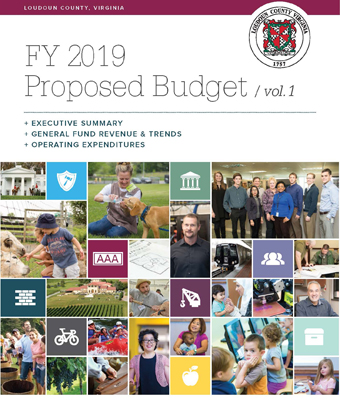 Link to Proposed FY 2019 Budget Document